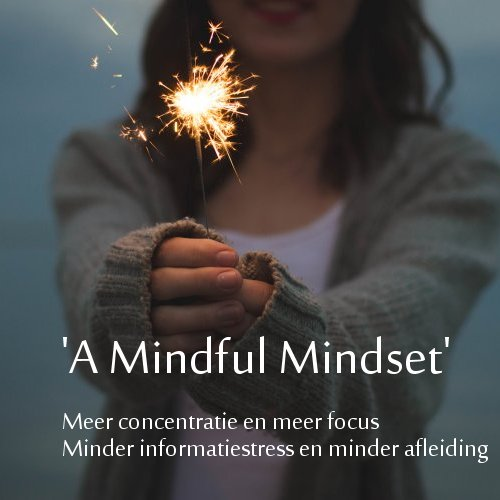 Training Mindful Mindset | digitalants.nl